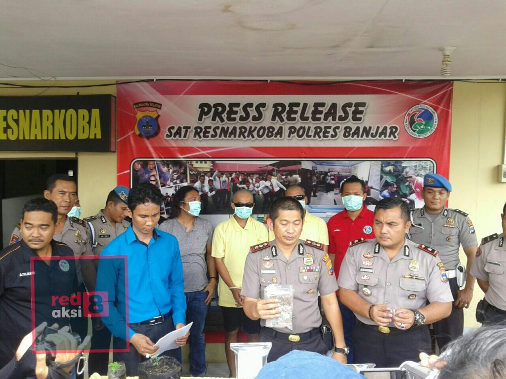 Pihak kepolisian lakukan ekpose atas penangkapan pengguna dan pemilik pohon ganja