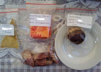 Hasil Simpel yang mengandung zat berbahaya seperti Boraks, Formalin dan Rhodamin B di Pasar Martapura Kabupaten Banjar Kalimantan Selatan
