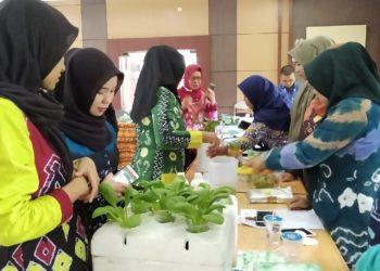 Pelatihan budidaya sayuran hidroponik untuk 15 sekolah calon adiwiyata nasional dan mandiri di Kabupaten Banjar (Teks dan Photo Nove TPH Kabupaten Banjar)