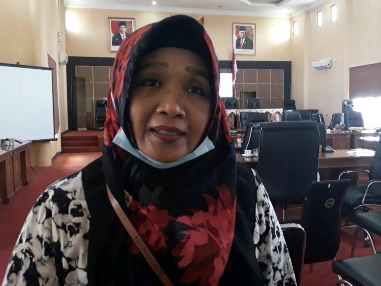 Erly Satriana Ketua Komisi III 20210718 025456